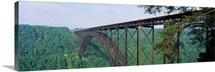 West Virginia, Route 19, Trees around New River Gorge Bridge