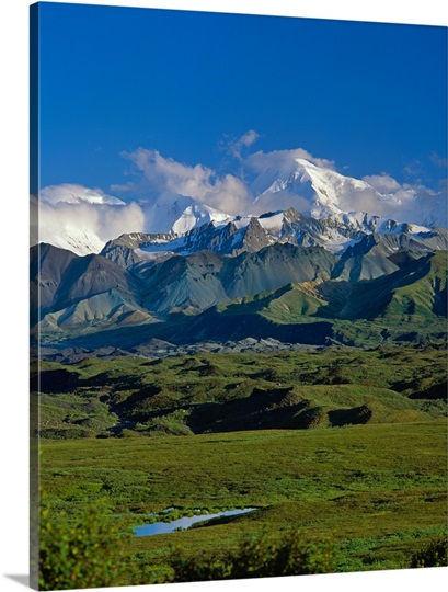 Wetlands beneath Mount McKinley, summer, Denali National Park, Alaska