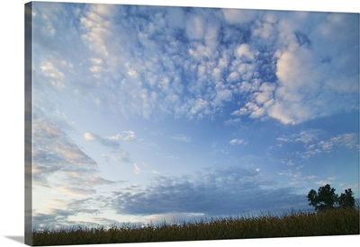 Wide angle view of clouds over silhouetted field, Iowa
