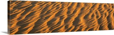 Wind blown Sand TX