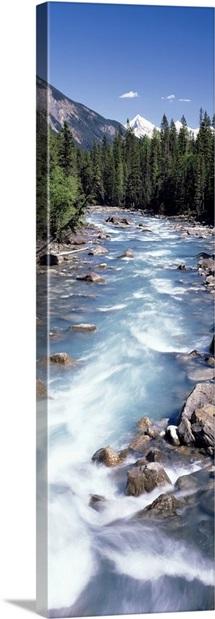 Yoho River Yoho Provincial Park British Columbia Canada