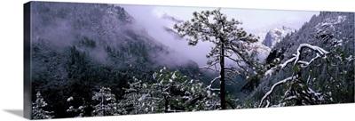 Yosemite Valley in Winter Yosemite National Park California