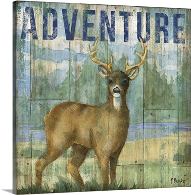 Adventure Lodge I