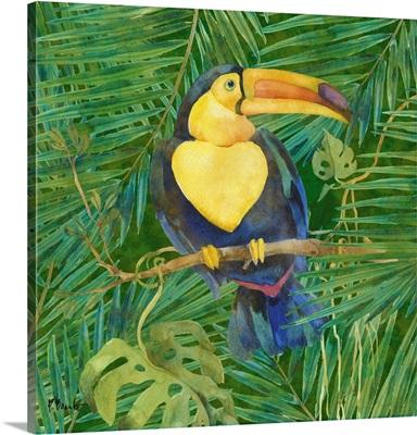 Amazon Birds II