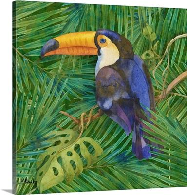 Amazon Birds III