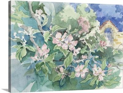 Apple Blossom Garden - Honfleur, France