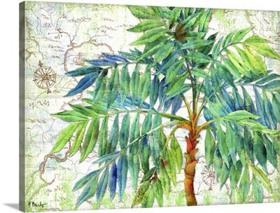 Aqueous Palm Horizontal I