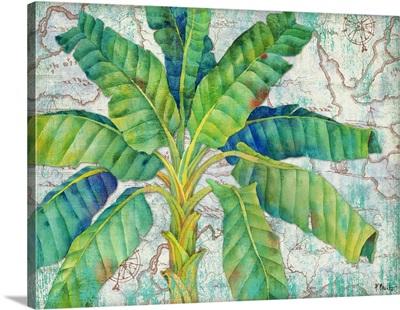 Aqueous Palm Horizontal II