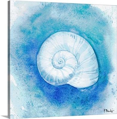Aqueous Shells IV