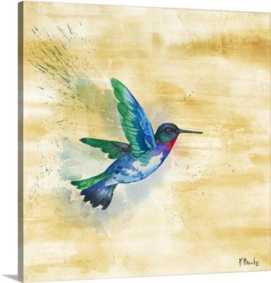 Arianna Hummingbird I