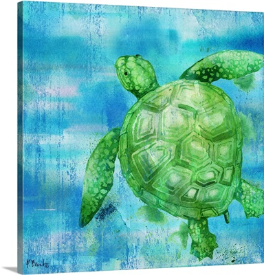Arianna Turtle