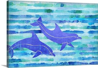 Aurora Dolphins