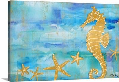 Aurora Seahorse