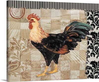 Bergerac Rooster III - Black