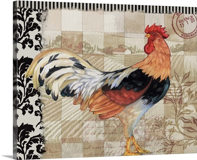 Bergerac Rooster IV - Black