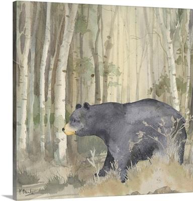 Birch Forest IV