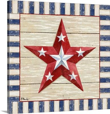 Bordered Patriotic Barn Star IV