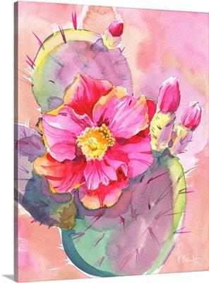 Cactus Bloom I