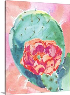 Cactus Bloom II