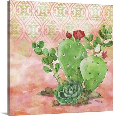 Cactus IV - Coral