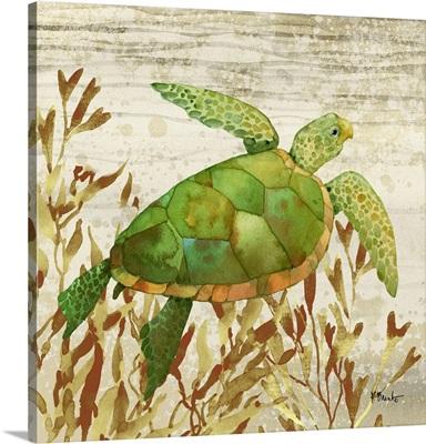 Calypso Turtles III