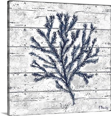 Cape Coral IV - White