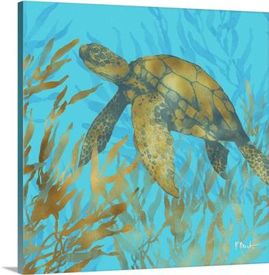 Cedar Key Turtle II