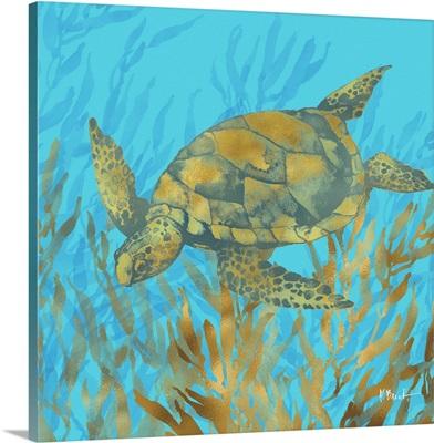 Cedar Key Turtle IV