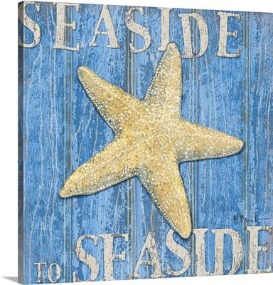 Coastal USA - Starfish I