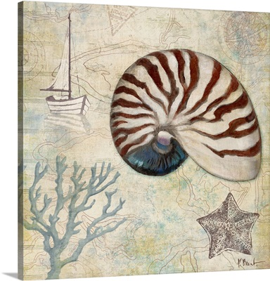 Discovery Shell I