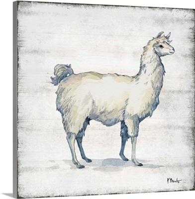 Farmhouse Llama I