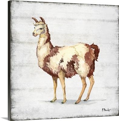 Farmhouse Llama II