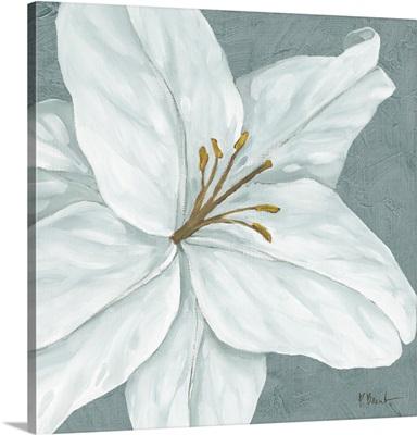 Floral Bloom VI