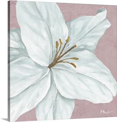 Floral Bloom VI - Pink