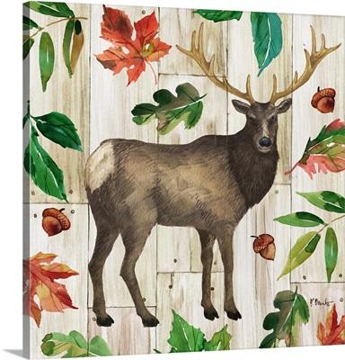 Forest Animals I