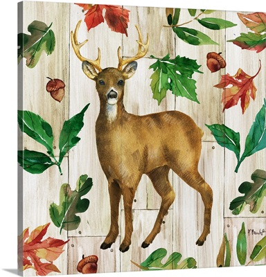Forest Animals II