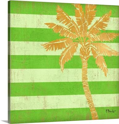 Gold Coast Palm - Color