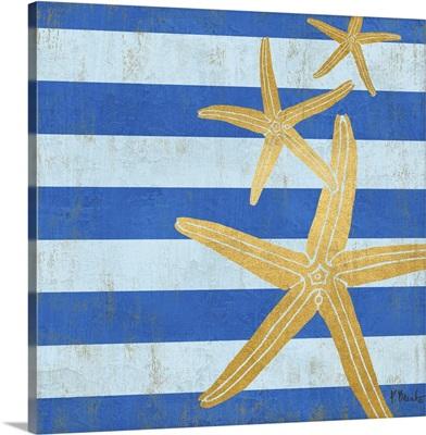 Gold Coast Starfish - Color