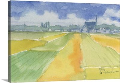 Golden Fields - Loire Valley