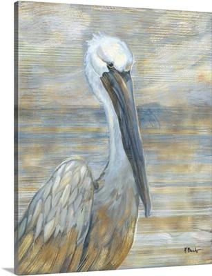 Golden Salty Pelican