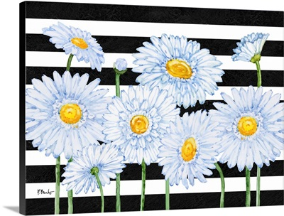 Helena Daisies Horizontal II - Stripes