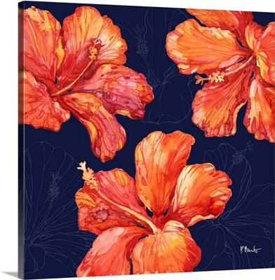 Hilo Hibiscus