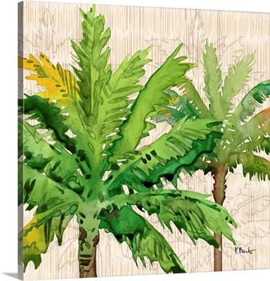 Hilo Palms III