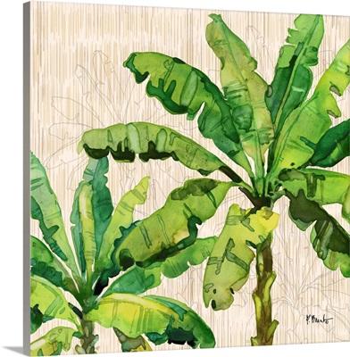 Hilo Palms IV