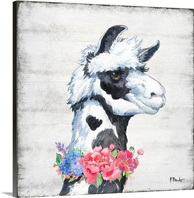 Llama Bloom I