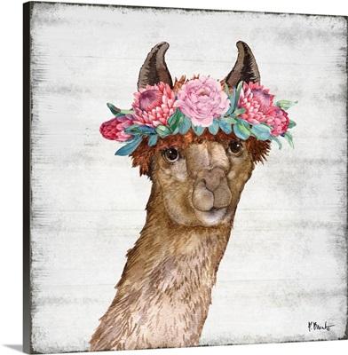 Llama Bloom II