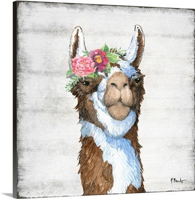 Llama Bloom III