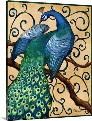 Majestic Peacock II