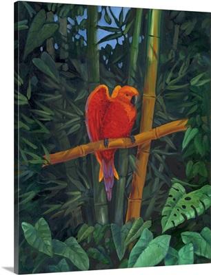Mandarin Love Bird