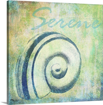Martinique Shells III - Serene